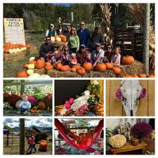 Colorado Springs Pumpkin Patch 2017 by Colorado U0027s Western Slope Best Pumpkin Patch 2017 New Castle