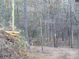 Long Pine lot 2 Chapin South Carolina for $59 000 with MLS