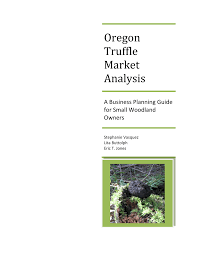 100 Craigslist Portland Oregon Cars And Trucks By Owner PDF Truffle Market Analysis A Business Planning