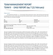 Team Management Daily Report Sample