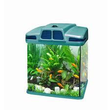 aquarium 15 litres achat vente aquarium 15 litres pas cher