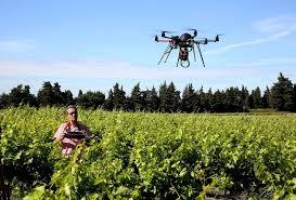 chambre d agriculture du vaucluse économie l agriculture vauclusienne fait sa troisième révolution