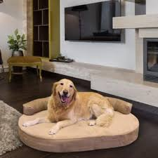 Size Extra Pet Beds For Less