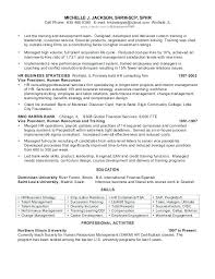 Taleo Resume Template Vice President Of Human Resources 3 Samples