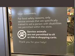 100 Walmart Carts Folding Chairs Publix Service Animals Are Not Permitted To Sit Or Ride In Carts