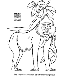 Search Results African Animal Coloring Pages For Kids