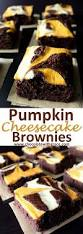 Pumpkin Marble Cheesecake Chocolate by Pumpkin Cheesecake Swirled Brownies Chocolate With Grace