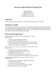 Examples Of A Job Resume Objectives For Insurance Images Gallery