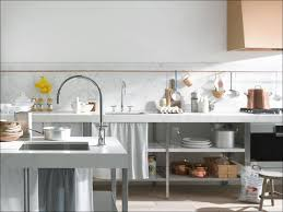 Dornbracht Kitchen Faucet Rose Gold by 100 Kitchen Faucets Chicago Bathroom Faucets A Tasty
