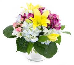 Same Day Flower Delivery Coupon Code - Same Day Flower Delivery 12 Best Florists In Singapore With The Prettiest Fresh Enjoy Flowers Review Coupon Code September 2018 Whosale Flowers And Supplies San Diego Coupon Code Fryouflowerscom Valentines Day 15 Off Fall Winter Flower Walls The Wall Company 1800flowerscom Black Friday Sale Free Shipping 16 Farmgirl Flowers Discount Code Off Cactus Promo Ladybug Florist Cc Pizza Coupons Discount Teleflorist Wet Seal Discount 22 1800 Coupons Codes Deals 2019 Groupon Unique Free Delivery Beautiful Fruit Of Bloom
