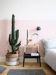 1 pflanze 3 stylings ein kaktus auf reisen craftifair