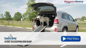 Lucky Dog 6' Telescoping Dog Ramp - YouTube Inexpensive Doggie Ramp With Pictures Best Dog Steps And Ramps Reviews Top Care Dogs Photos For Pickup Trucks Stairs Petgear Tri Fold Reflective Suv Petsafe Deluxe Telescoping Pet Youtube The Writers Fun On The Gosolvit And Side Door Dogramps Steps Junk Mail For Cars Beds Fniture Petco Lucky Alinum Folding Discount Gear Trifolding Portable 70 Walmartcom 5 More Black Widow Trifold Extrawide