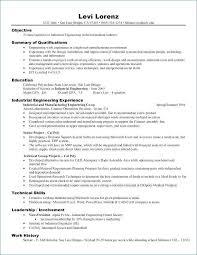 Skills Based Resume Example Luxury Examples Nppusa Org