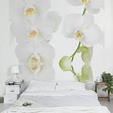 apalis fototapete orchidee in weiß vliestapete wellness