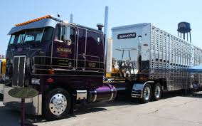Trucking Companies With Interesting Names | Page 2 | TruckersReport ...