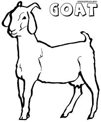 Goat Coloring Book Domestic Sheet