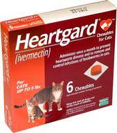 heartgard for cats affordable pet heartworm