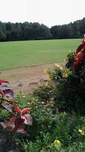 It s not easy being green or how we keep our Great Lawn looking