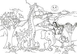 Animals Coloring Medium Size Cool Pages Of Designs Animal Zoo