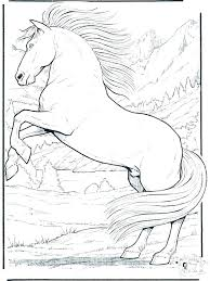 Horsecoloring Pages Gypsy Horse Coloring Page Spirit Images Of Different Colored Horses