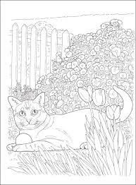 Lovable Cats Dogs Coloring Book Creative Haven