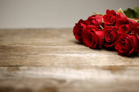 Free Rose On Wood Images Pictures And Royalty Stock Photos