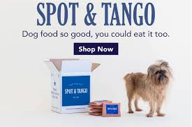 Spot And Tango Reviews & Coupons | Savvy Subscription Shoedazzle Coupons And Promo Codes Draftkings Golf Promo Code Tv Master Landscape Supply Great Deal Shopkins Shoe Dazzle Playset Only 1299 Meepo Board Coupon 15 Off 2019 Shoedazzle Free Shipping Code 12 December Guess Com Amazoncom Music Mixbook Photo Co Tonight Only Free Shipping 50 16 Vionicshoescom Christmas For Dec Evelyn Lozada Posts Facebook
