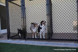 gateway animal clinic colonial gateway veterinary center boynton fl 33435 yp