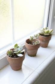 Best Bathroom Pot Plants by Steal This Look Houseplants In The Bedroom Edition Gardenista