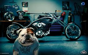 Mack Trucks Wallpaper And Background Image | 1280x799 | ID:98016 Mack Is The Bulldog Becoming A Mutt Grheadgrrrl Truck Hood Ornament Tote Bag For Sale By Jill Reger Titan Series 03 Wallpaper Trucks Buses Wallpaper Vintage Mack Truck Bulldog Hood Ornament Solid Chrome Patent 87931 Patent 87981 Chrome Mascot Vintage With Fireman Helmet Firetruck Ash Tray Ashtray Full Size Clean Truck Hood Ornament Editorial Image Image Of Bull 31278710 Close Up Of The On A Antique Service Dealer Double Sided Sign Findz
