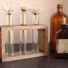 Rustic Laboratory Bud Vase Test Tube Vintage Oak Industrial Flower