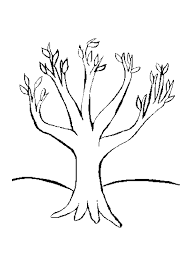 Various Types Of Tree Coloring Pages Cenul Free