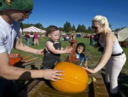 Vancouver Pumpkin Patch Wa by A Proliferation Of Pumpkin Patches The Columbian