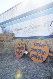 Pumpkin Patch Petaluma California by Happy Weekend Pumpkin Patching In Petaluma U2014 Good On Paper