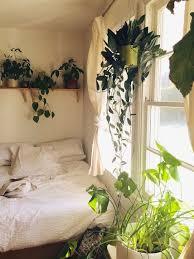 Plants On A Shelf Bedroom