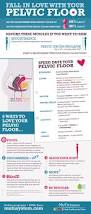 Pelvic Floor Spasms Female by Best 25 Pelvic Floor Ideas On Pinterest Pelvic Floor Exercises