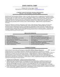Executive Director Sample Resume 21 Best Construction Templates Samples Images On Assistant Vice President