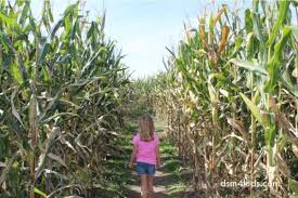 Best Pumpkin Patch Des Moines by 2016 Pumpkin Patches U0026 Corn Mazes Near Des Moines Dsm4kids