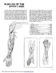 Anatomy Coloring Book Dover
