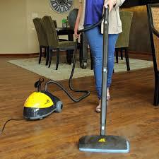 Fleas Hardwood Floors Borax by Killing Fleas With Steam Long Time No Flea