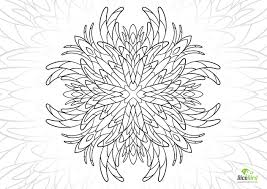 Tropical Flower Free Coloring Book Pages For Adults