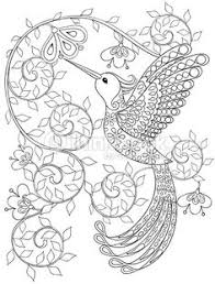 Clipart Vectoriel Coloring Page With Hummingbird Zentangle Flying Bird For Adult Zenbroidery