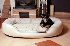 Tempur Pedic Dog Beds by Round Dog Bed For Great Dane Best Dog Bed For Great Dane U2013 Dog