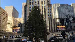Rockefeller Center Christmas Tree Fun Facts by 2016 Rockefeller Center Tree Lighting What You Need To Know