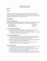 Functional Resume Sample New Awesome 100