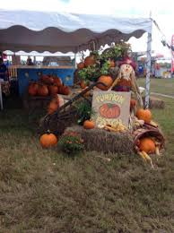 Pumpkin Patch Jacksonville Al by Find Corn Mazes In Elkton Florida Sykes And Cooper Farm In