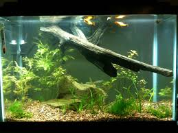 Extra Large Aquarium Decorations by Simple Cheap And Professional Looking Aquarium Light Upgrade 3 Steps