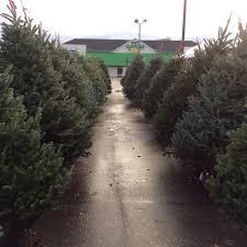 Christmas Tree Shop South Attleboro by Artery Garden Center Home Facebook