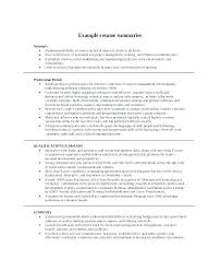 Resume Profile Summary Example Of For Examples Career
