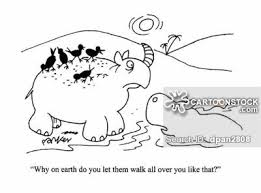 Hippo Cartoons Cartoon Funny Picture Pictures Image